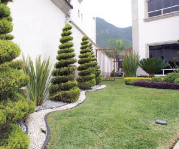El arte de dise ar jardines la tarde for Jardines con poco mantenimiento