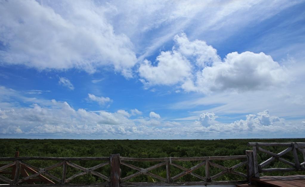 Te recomendamos llevar repelente de mosquitos, la isla en su mayor parte pertenece a una reserva natural con grandes bosques de manglares.Cortesía del Hotel Las Nubes de Holbox
