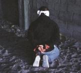 Liberan a 21 secuestrados en Nuevo Laredo; hay un detenido