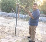 Vecino sacrifica a enorme víbora