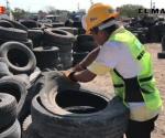 Continúan fomentando cultura de reciclaje