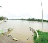 Casi desborda el río Pánuco