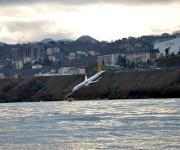 Avión turco derrapa en pista y casi cae al Mar Negro
