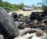 ¿Qué destino le das a los neumáticos que desechas en caso de tener automóvil?