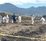Hallan 8 cuerpos en otra fosa en Nayarit