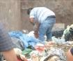 Localizan tejido humano en un bote de basura