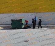 Reportan 'embolsados' en Reynosa; policías hallan perritos muertos