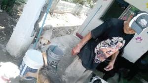 Brindan refugio a Domingo y a 'Nini'