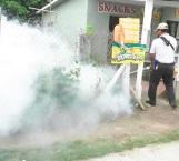 Traen moscos a familias en jaque
