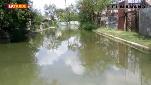 Hartazgo entre vecinos por brote de aguas negras