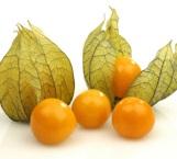 La magia del 'Golden Berry' y su poder contra el hígado graso
