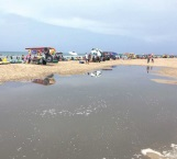 Aguas negras contaminan la Playa Miramar