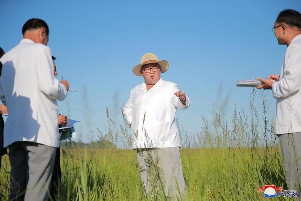 El líder norcoreano instruye al gobierno local para una futura construcción en Kyongsong (Corea del Norte).