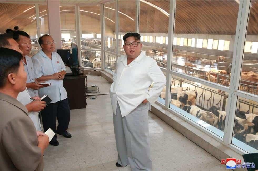 El líder norcoreano Kim Jong Un inspecciona la Stock General Farm, de Ungok, en Corea del Norte.