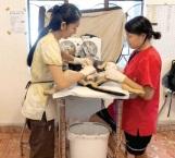 Para evitar sobrepoblación piden esterilizar a las mascotas