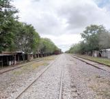 Limpian vías férreas; regresan los ecolocos