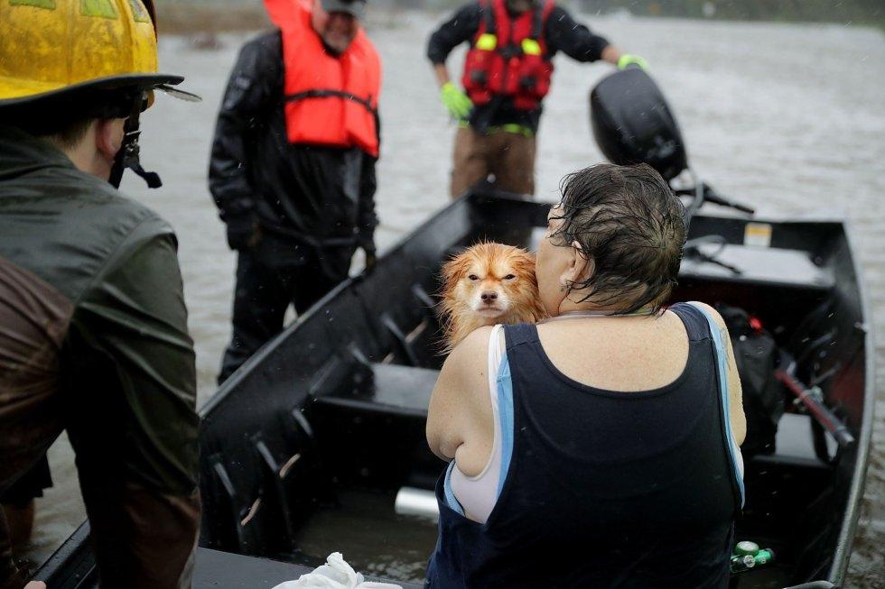 Trabajadores de rescate del Departamento de Bomberos No. 7 del municipio y voluntarios del Equipo de Respuesta de Crisis Civil utilizan un bote para rescatar a una mujer y su perro de su casa inundada durante el huracán Florence en James City (EE UU). CHI