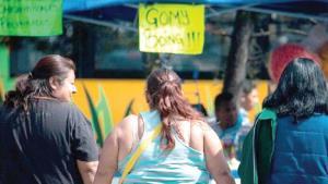Politécnicos investigan para prevenir la obesidad