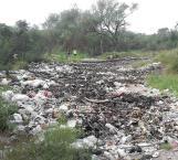 Se hacen 'ojo de hormiga' autoridades ambientalistas