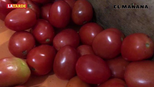 Aumentan costo del kilo de tomate en Reynosa