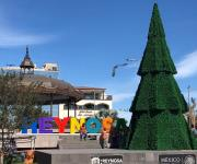 Instalan el tradicional pino navideño en la plaza principal
