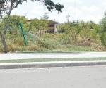 Cae malla ciclonica de Parque Líneal