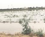 Créditos de emergencia a productores agrícolas