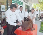 Vacunan a 22 mil mascotas para prevenir la rabia