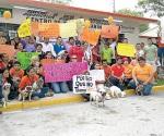 ¡No al maltrato de los animales!
