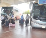 Checan los autobuses