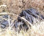 'Embolsado' y resultó ser un animal muerto