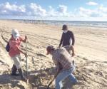 Establece Coepris veda sanitaria por marea roja