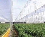 Sagarpa dará prioridad a pequeños productores