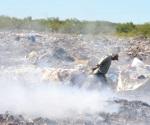 Urge frenar la contaminación en Las Anacuas