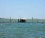 Pescadores listos para la captura de camarón