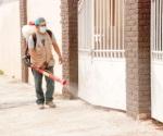 Detectan chikungunya, refuerzan la vigilancia