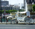 Carretoneros dejarán la basura; ahora serán turísticos
