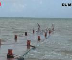 Aumenta nivel de agua en Laguna Madre