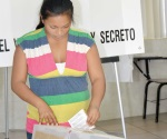 En manos de mujeres y jóvenes entusiastas próximas elecciones