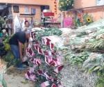 'Calientan' floristas actividad comercial