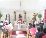 Celebran Domingo de Ramos