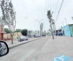 Buscan reactivar economía con festivales en  la Oaxaca