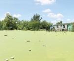 Recuperarán cuerpos de agua como las calicheras de Reynosa