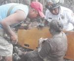 Chiapas activa protocolos por erupción; hay 7 muertos