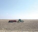 Obliga sequía a parar ´tardío´