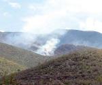 ´Devoran´ incendios 4 mil 400 hectáreas