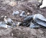 Hallan 6 cadáveres en fosa en Irapuato