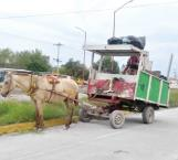 En pleno Siglo 21 se sigue utilizando caballos como motor en carretones
