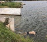 Recuperan cuerpo de hombre sin vida en La Playita